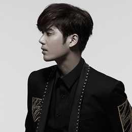 kim kyu jong double s 301 profile