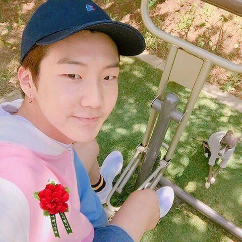 kpop puppy, kpop pets, kpop dogs, kpop idol pets, seunghoon haute