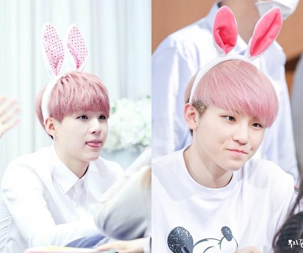 kpop idols look a like, kpop look a like, kpop similar idols, kpop similar faces, woozi suga