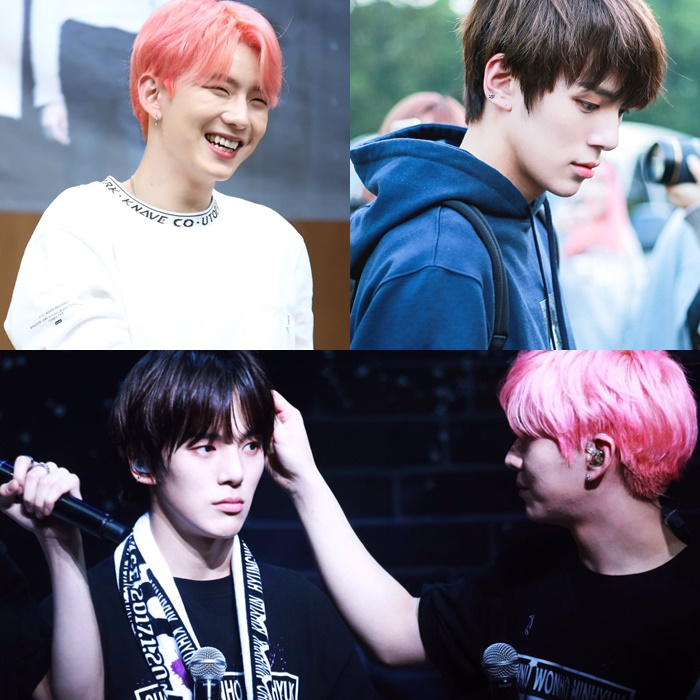kpop idol visual, visual members, warm cold visual members, kpop warm cold, monsta x minhyuk kihyun