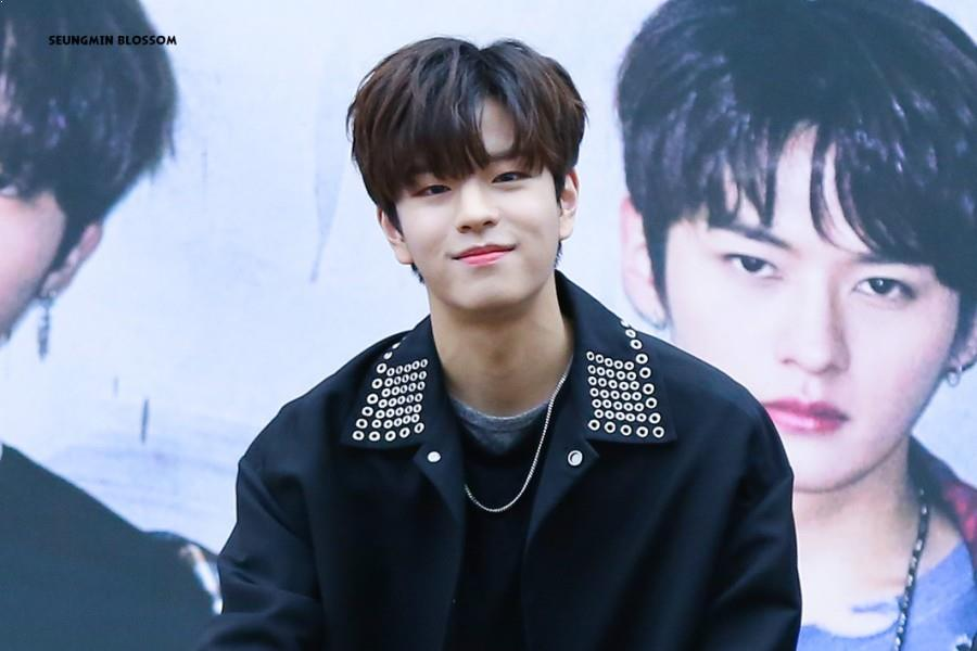 Stray Kids, Stray Kids Profile, Stray Kids SeungMin, Stray Kids SeungMin Profile