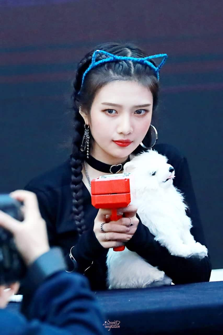 Red Velvet Joy, Red Velvet Joy Profile, Red Velvet Joy Money Gun, KPop Idol Money Gun
