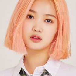 dreamnote, dreamnote members, dreamnote facts, dreamnote profile, dreamnote facts, dreamnote age, dreamnote height, dreamnote debut, dreamnote height, dreamnote miso, miso