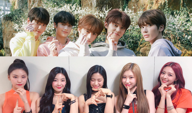 rookie of the year, rookie, rookies 2019, 2019, debut, kpop idol debut 2019, txt, itzy, cherry bullet,