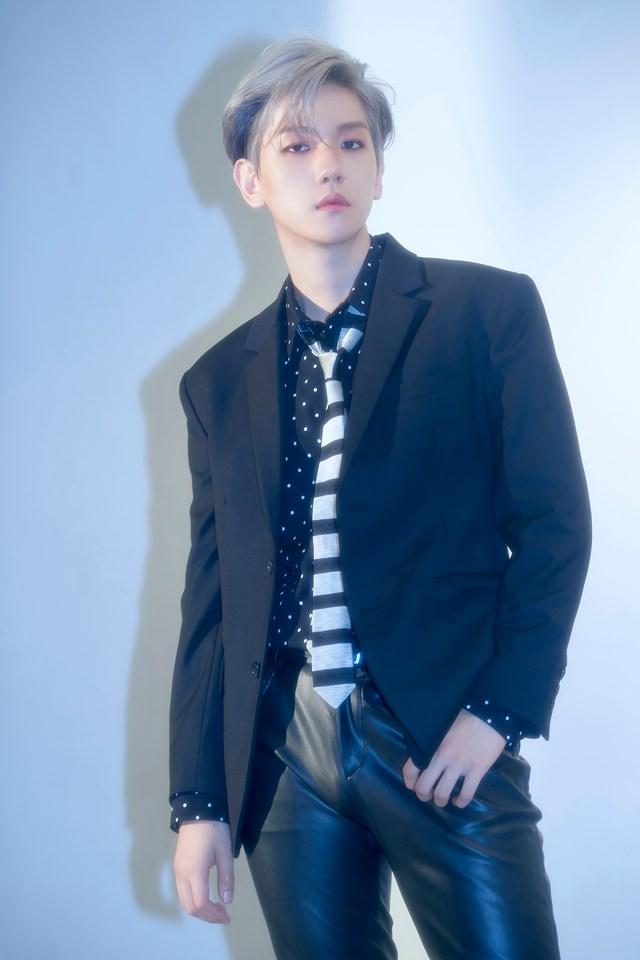 exo, exo profile, exo members, exo facts, exo age, exo height, exo weight, exo leader, exo baekhyun, baekhyun