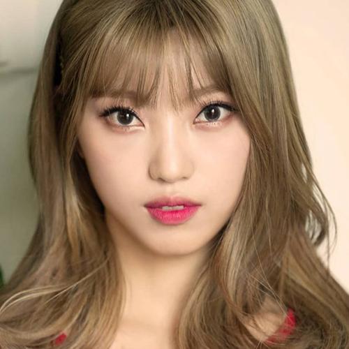 PURPLEBECK YeoWool profile
