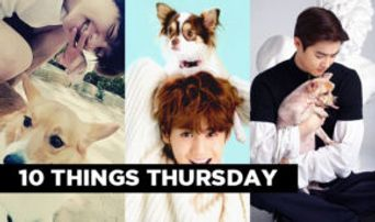 10 Things: Daddy K-Pop Idols of Adorable Puppies