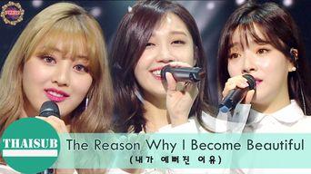 Video )) EunJi x JiHyo x Ben - The Reason Why I'm Beautiful