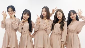 Busters Profile: JTG Entertainment's Five Member Girl Group
