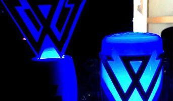 Fans Have Mix Feelings For WINNER's New Lightstick