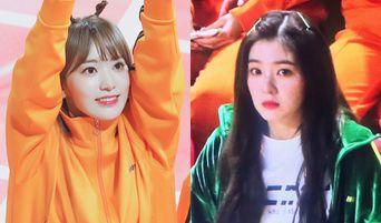IZ*ONE's Sakura Shyly Checks Out Red Velvet's Irene During 'ISAC 2019' Seollal