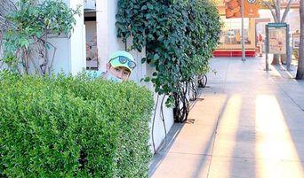 Can You Identify The K-Pop Idol Hiding Behind The Bush?