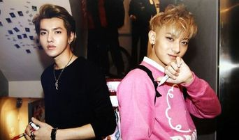 Here's What Sasaengs & Former EXO Members Kris & Tao Talked About According To The Chinese Media