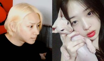 Netizens Suspect That HeeChul Is Currently Taking Care Of Sulli's Pet Cat