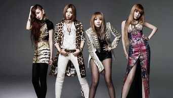 Former K-Pop Groups Agencies Could Have Done A Better Job Keeping Alive