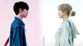 'The Diary Of My Fan Life' (2020 Web Drama): Cast & Summary