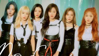 APRIL Profile: K-Pop Fairies Debut as DSP KARA's Baby Sisters