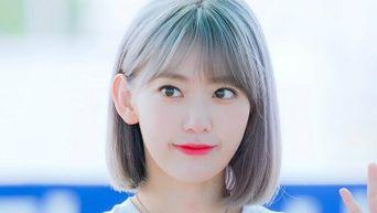 J-Pop Idol Sakura VS. K-Pop Idol Sakura: Which Is Your Preference?