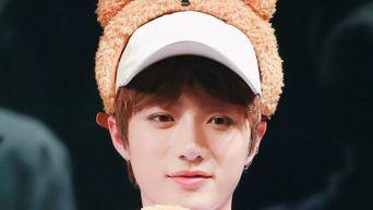 Say Hello To The Bear Family Of K-Pop
