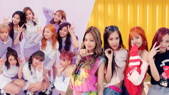 Domestic Fans Compare TWICE & BLACKPINK Amidst Recent French Media Controversy