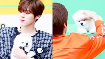 Netizens Squeal At How Adorable DdaDda And Kim WooSeok Look Together