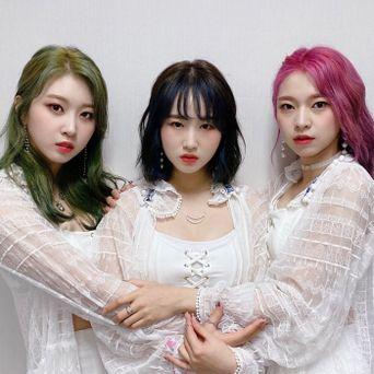 3YE Members Profile