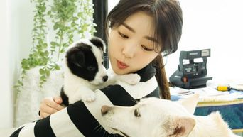 Chae SooBin Posts Adorable Pictures With Her Dogs