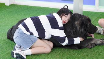 Choi YeNa, Shooting Of 'Animal Detective Yena' Behind-The-Scene - Part 1