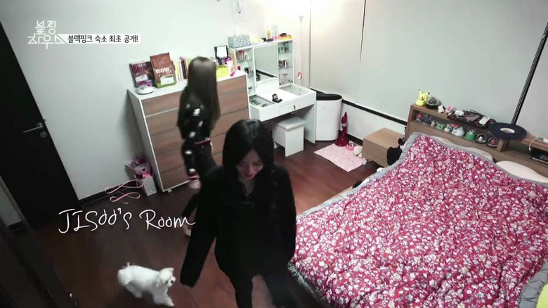 A Look Inside The Luxury Apartment YG Entertainment Idols Use As Dorms