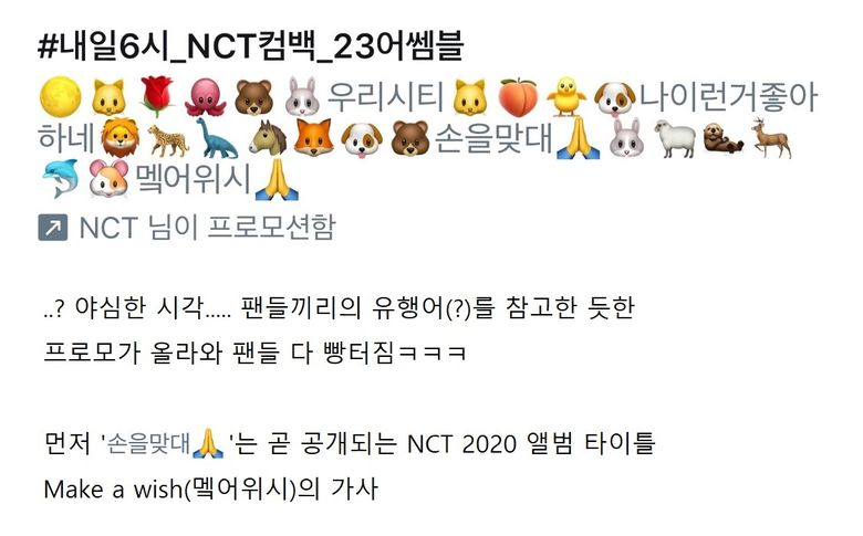 Find Out More About The Emoticons Of Each NCT 2020 Members